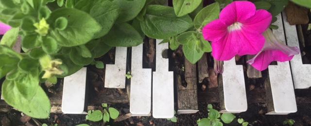 piano-tunes